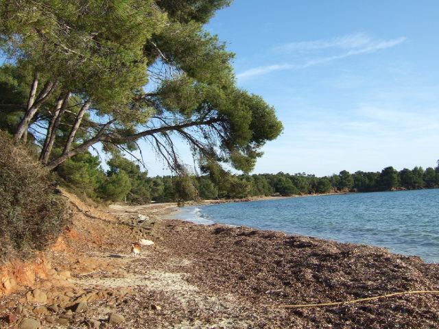 Balade sur le littoral varois Dscf2125