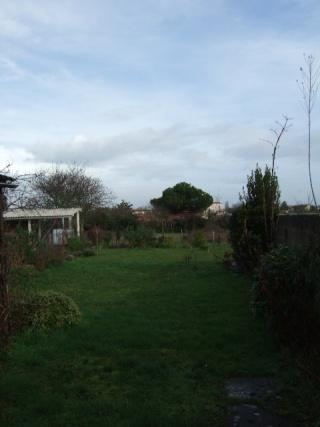 un ptit tour du jardin en janvier - Page 2 Dscf2314