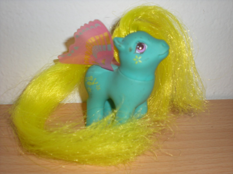 CERCO MY LITTLE PONY , Mio mini pony anni 80 Dscn7010