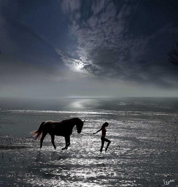Horseback Riding 59981010
