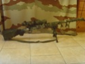BAR10G Snv35310