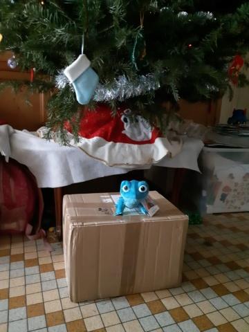 Père-Noël Surprise 2019 - Inscriptions closes - A vous de jouer  - Page 4 20191211