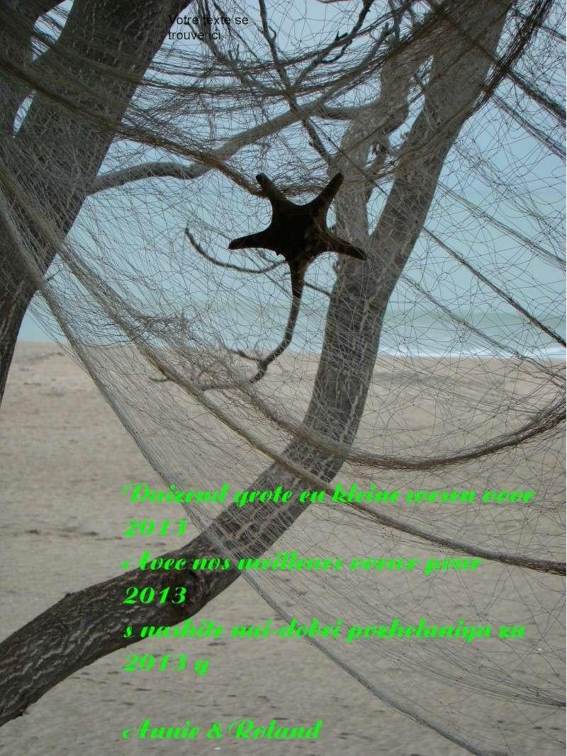 Bonnes Fêtes et Meilleurs Vœux à tous pour 2013 - Page 3 Dsc08411