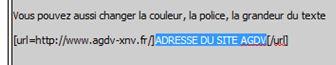 POSTER UN LIEN URL Captur11