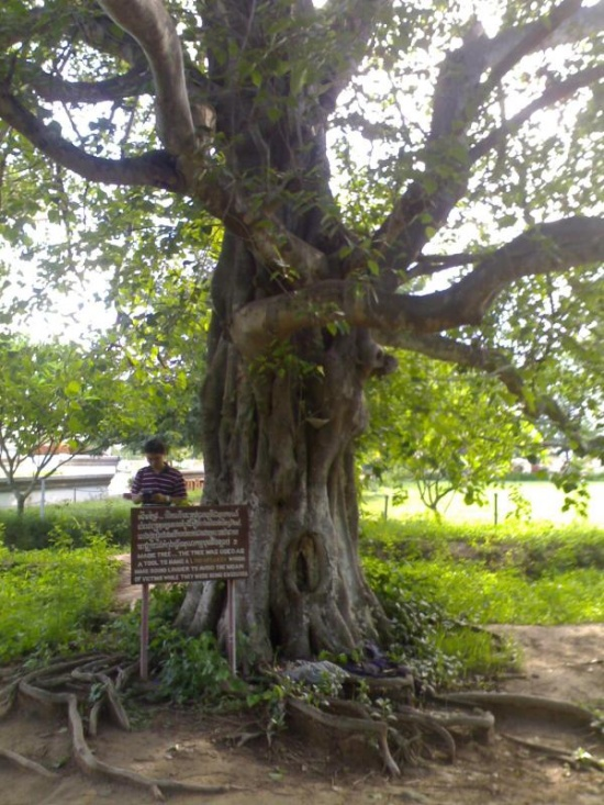 Tội ác của Khmer Đỏ Image013