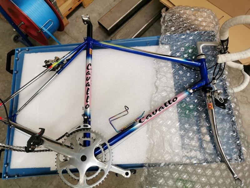 Cavallo Marino Maestro SLX 20200317