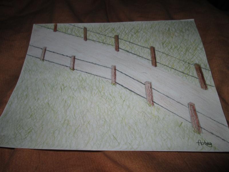 Le petit carnet secret de F-loana Chemin11