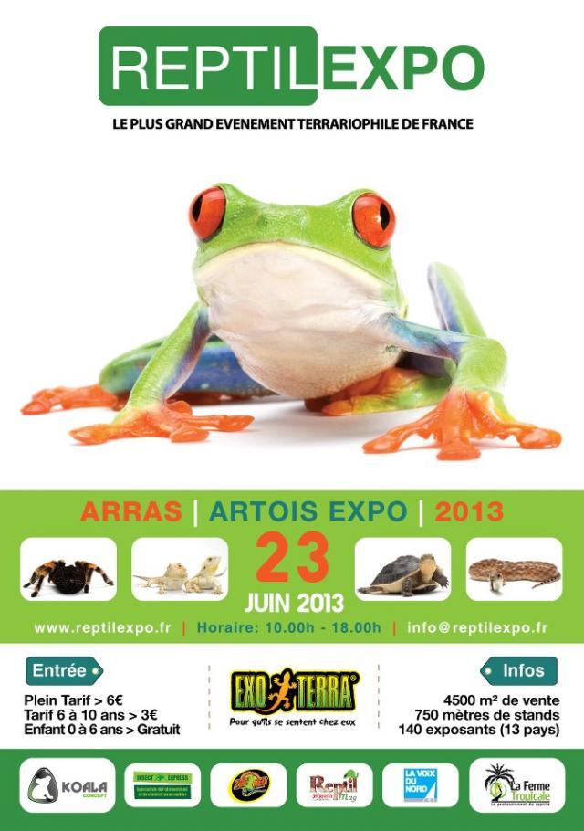 Arras 23juin 2013 Reptil10