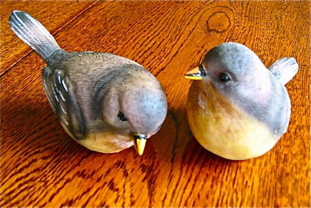 Two Birds from Philadelphia Img_2728