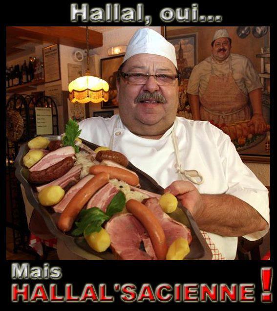L 'image du jour  - Page 2 Halall10