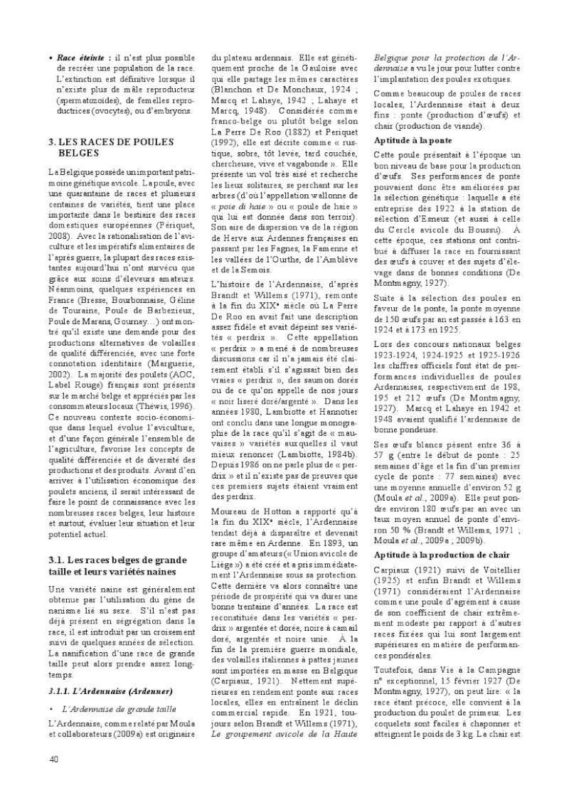 poules de races belges, document pdf Poules13