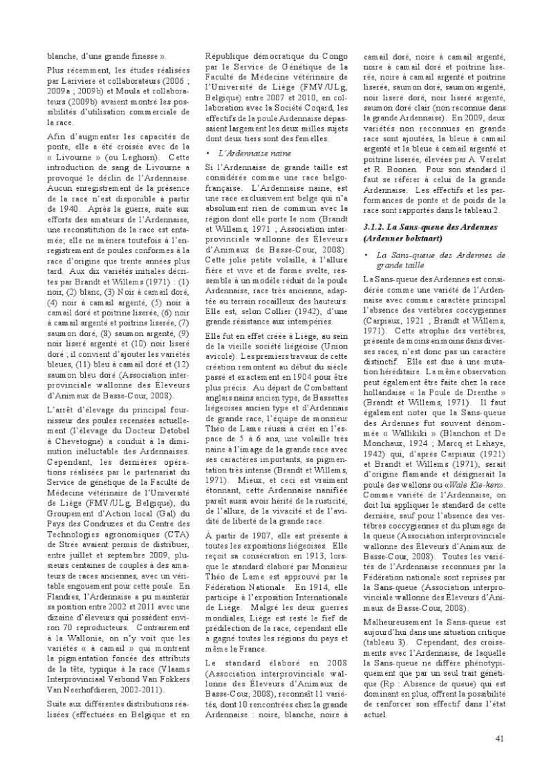 poules de races belges, document pdf Poules14