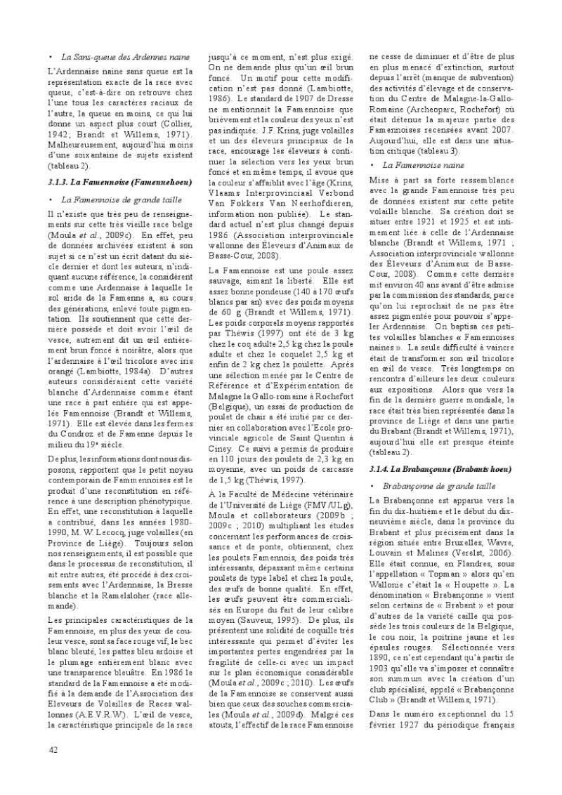 poules de races belges, document pdf Poules15