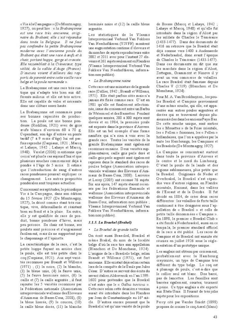 poules de races belges, document pdf Poules16