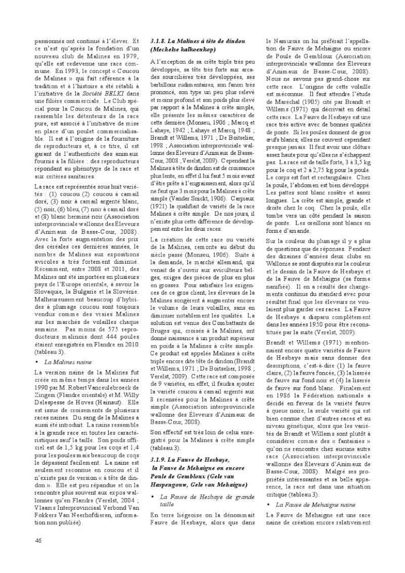 poules de races belges, document pdf Poules19