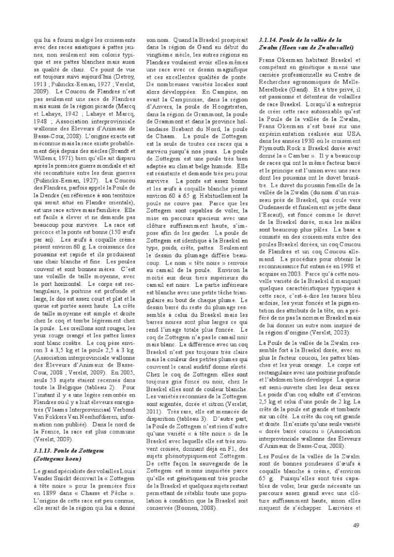 poules de races belges, document pdf Poules22