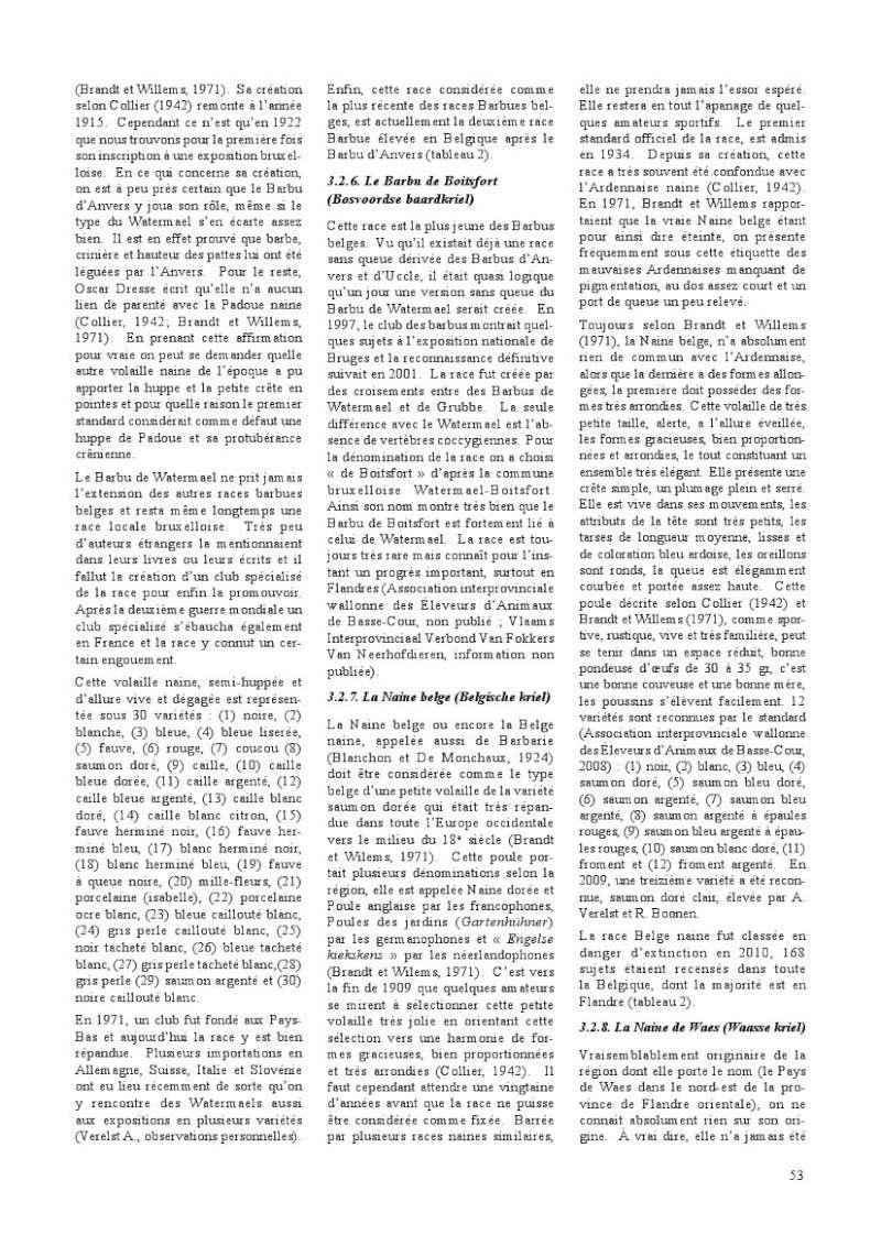 poules de races belges, document pdf Poules26