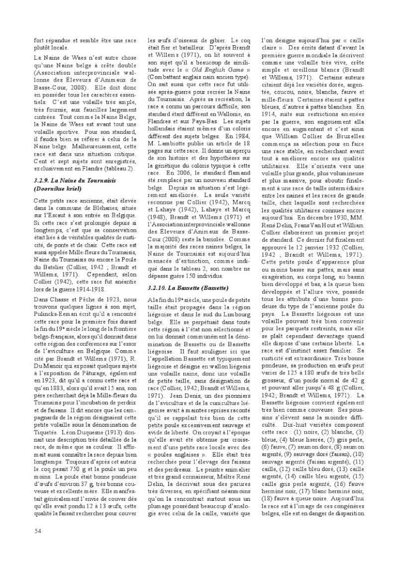poules de races belges, document pdf Poules28
