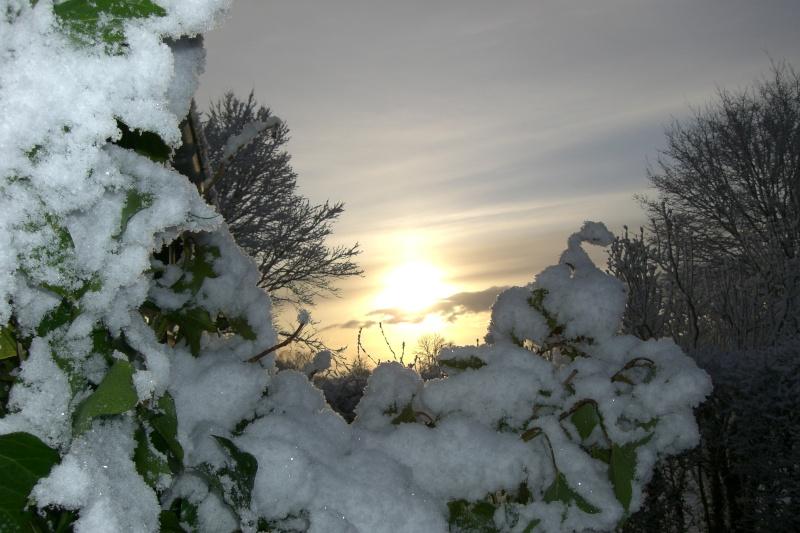 lever de soleil Cimg1411