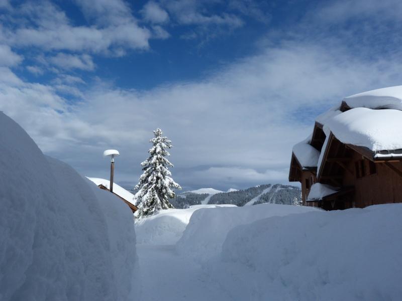 les plus belles décorations pour les fêtes d'hiver P1070810