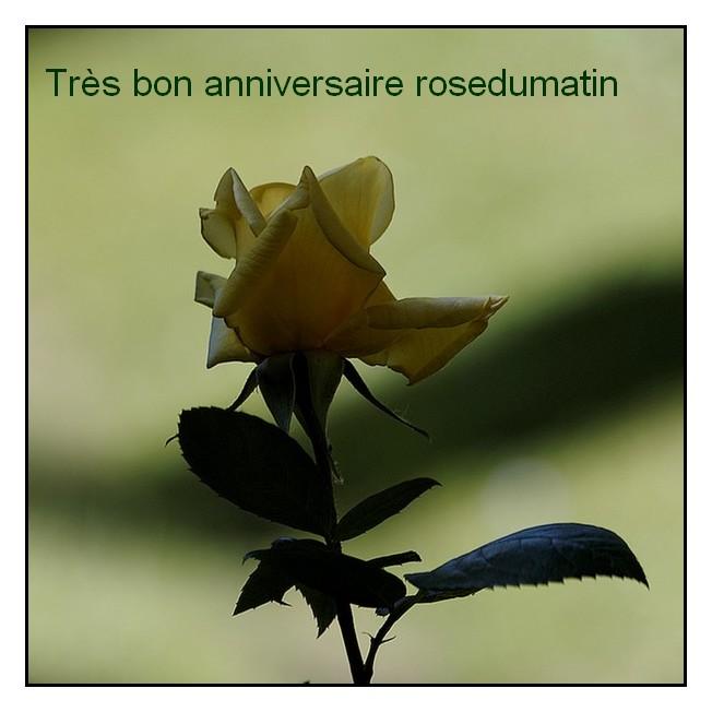 BON ANNIVERSAIRE, Rosedumatin - Page 5 Pref4710