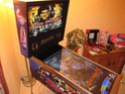 [TERMINÉ] The Miracle Pinball Cab Borderless Playfield (Standard Body 42/32/17) Flippe12