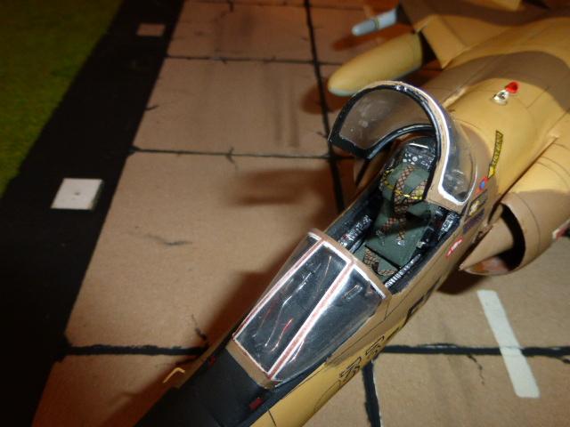 Mirage F1 - C en bois et carton 1/3 P1000312
