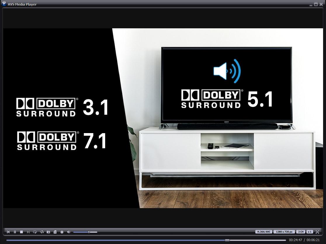 AVS Media Player 5.2.5.144 Media_11