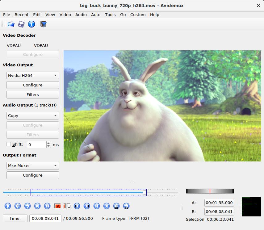 Avidemux 2.7.6 Screen14