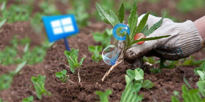 Προγράμματα στα Windows 10+ που πρέπει να απεγκαταστήσετε  Window17