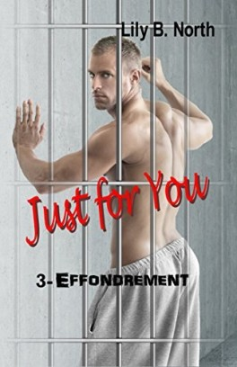 Just for you - Tome 3 : Effondrement de Lily B. North Just-f10