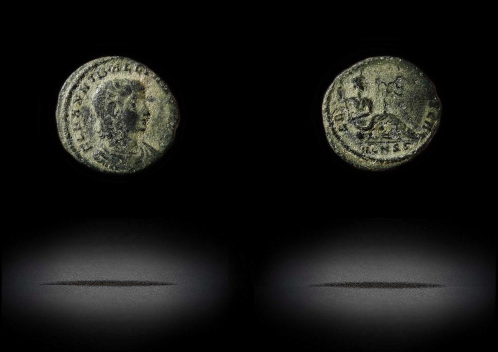 ID Hannibalianus  Han110