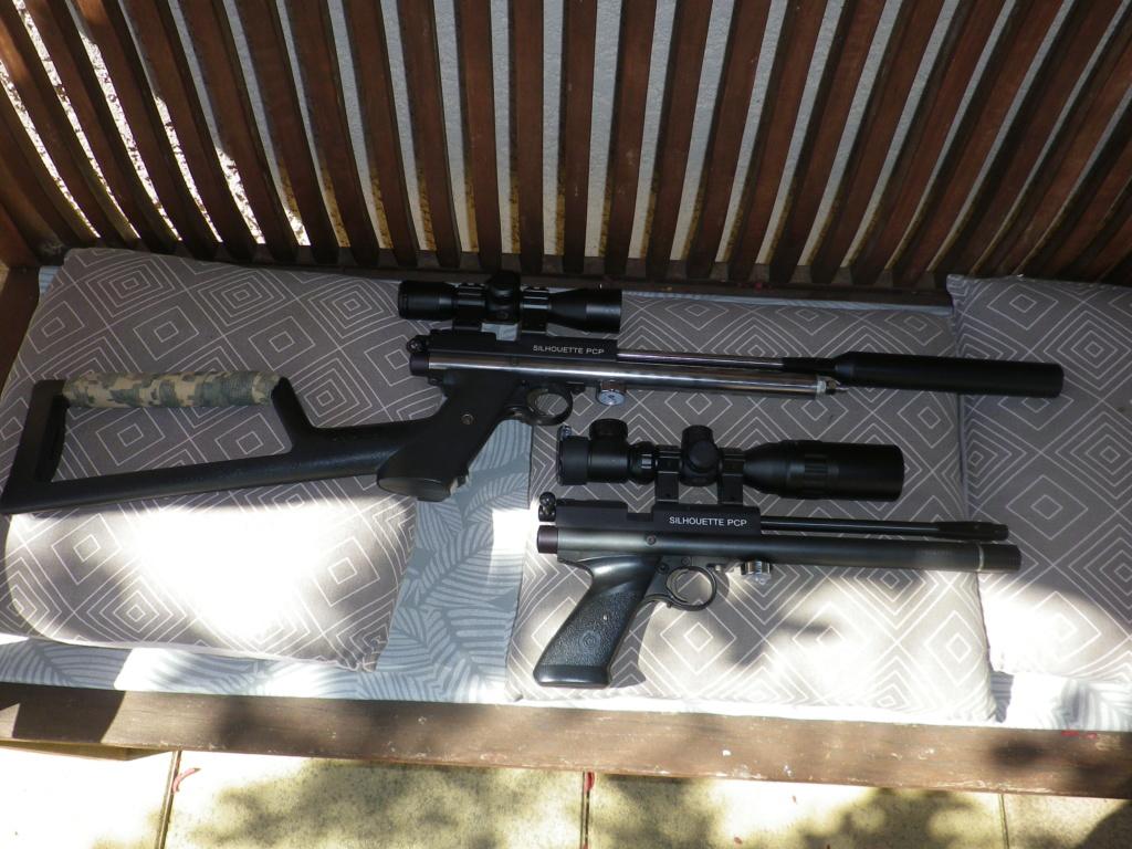 Amélioration pistolet 1701p silhouette Crosman ? - Page 3 Imgp0014