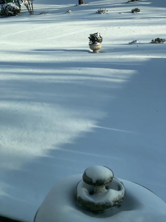 Snow in Houston D6283110