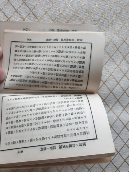 Petit livre japonaise peau de requin 20191113