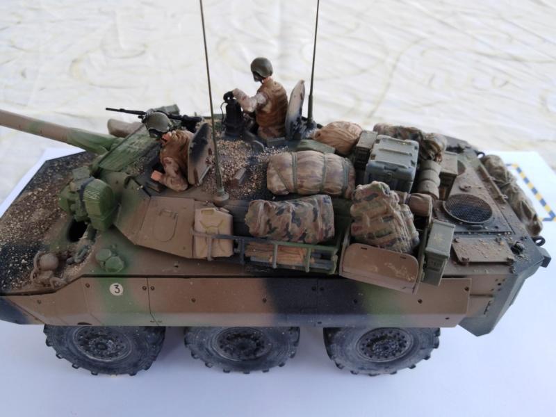 tiger - AMX10 RCR  , Tiger Model 6110