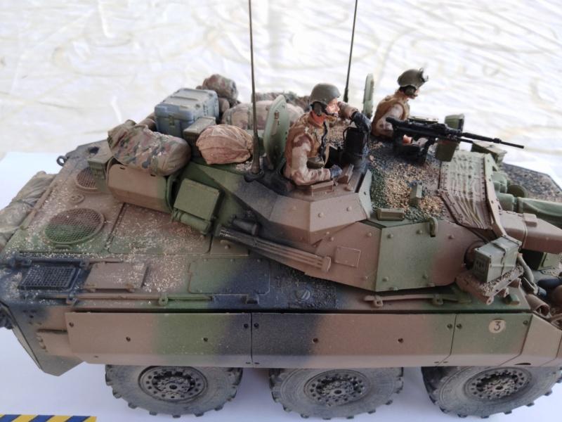 tiger - AMX10 RCR  , Tiger Model 6210