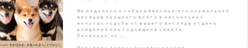 Ганглиозидоз - Страница 5 1711