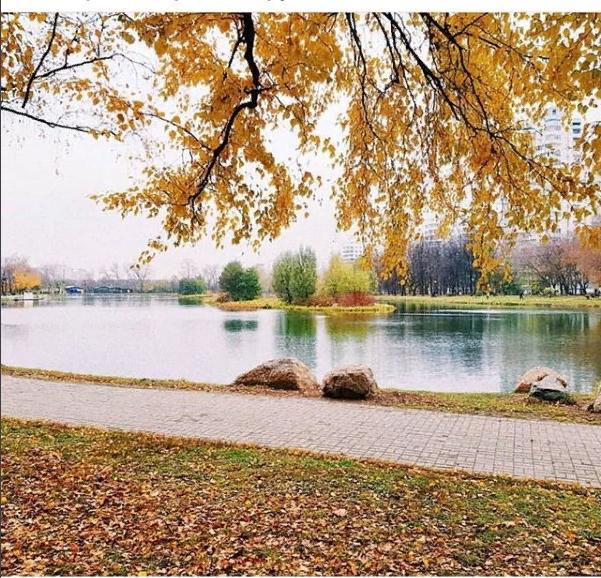 """Природа у ЖК """"Летний сад"""" - Страница 3 Kcjhhr10"""