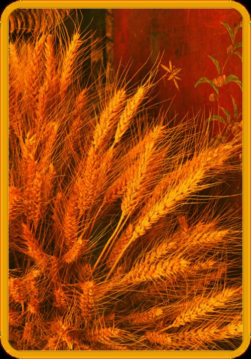 Праздник Хлеба (Lammas, Lughnasadah). 411