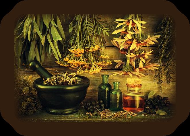 Скрытая сила трав: Основное руководство по Магии Трав. _11