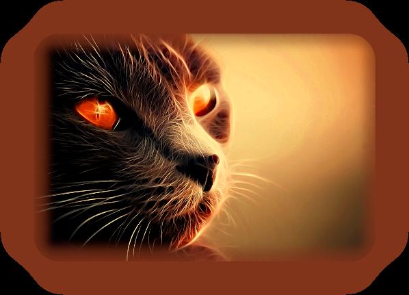 Сказочные Кошки: Магия и Предания Кельтской Кейт Сидхе. _13