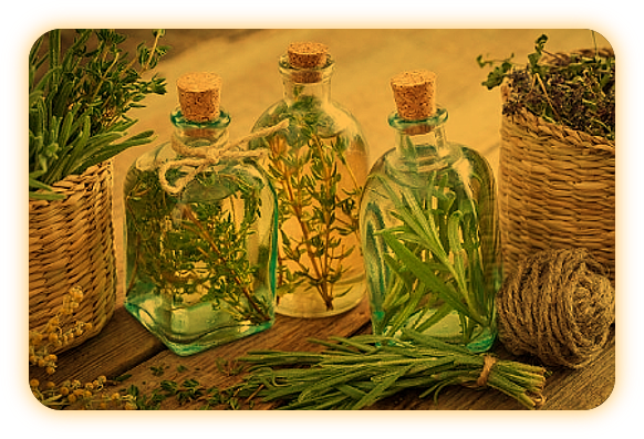 Магия Травы Тимьян. Auu_110