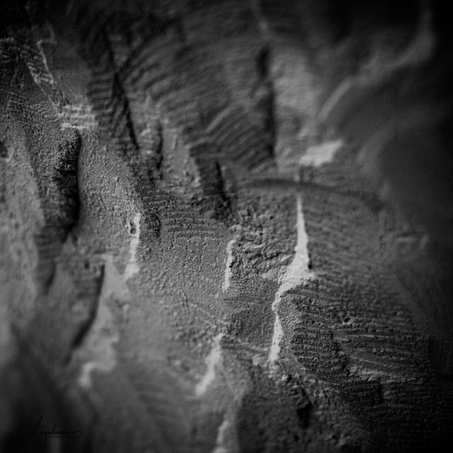 Concours 01/19: Texture Textur14