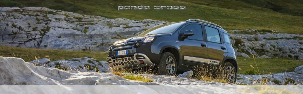 فيات باندا كروس Fiat Panda Cross  بطلة الصحراء لعام 2019 Img10