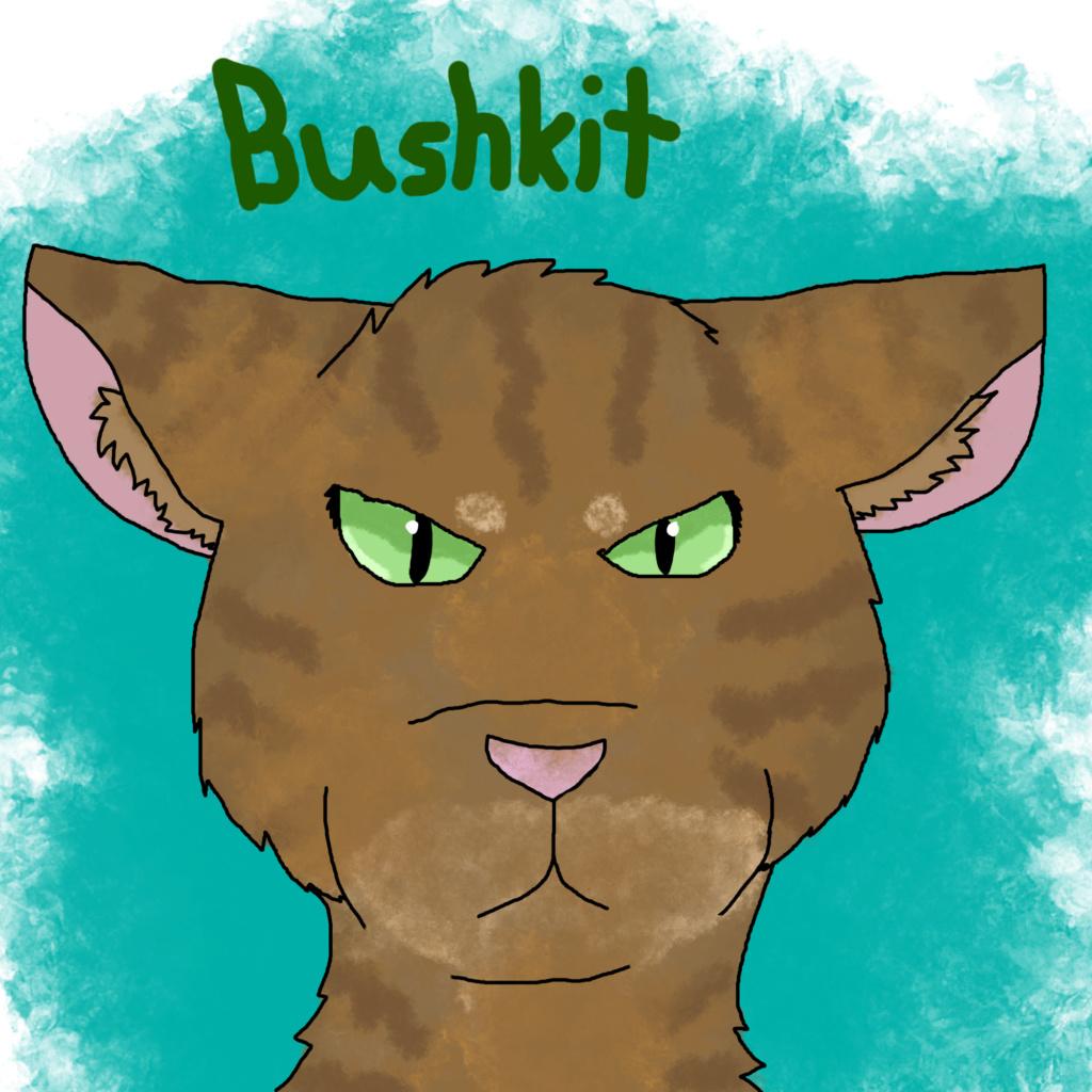 Falcon's Requests! Bushki11
