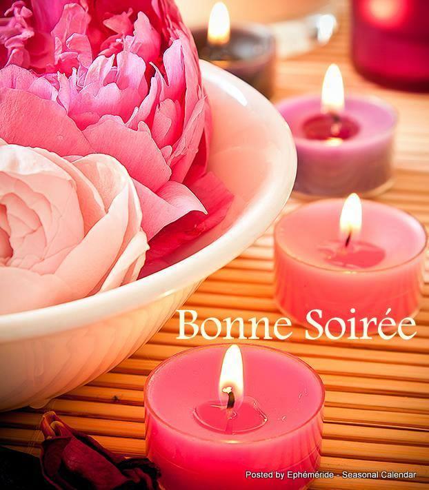 Bonjour ~ Bonsoir  - Page 3 19_jan10