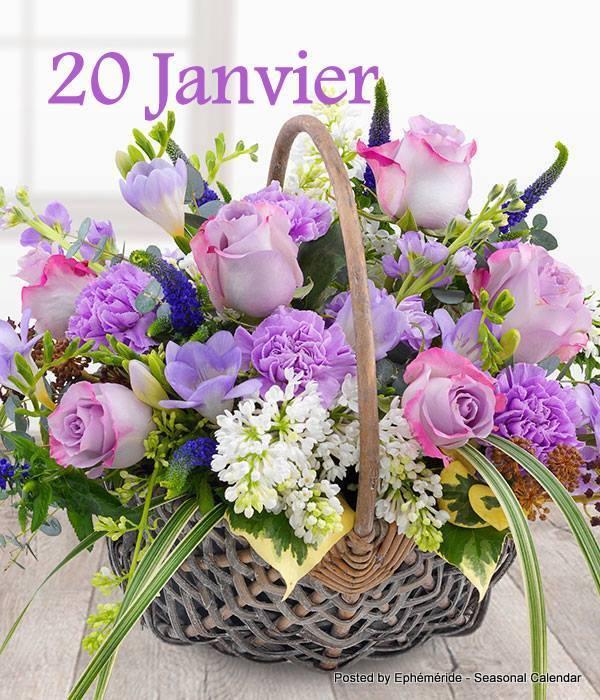 Bonjour ~ Bonsoir  - Page 3 50243812