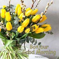 Bonjour ~ Bonsoir  - Page 3 50280510