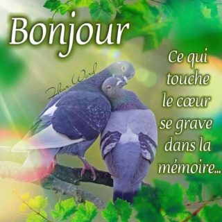Bonjour ~ Bonsoir  - Page 5 Eadu5-10